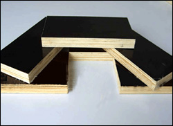 BLACK FILM FACED PLYWOOD China Manufacturer Supplier